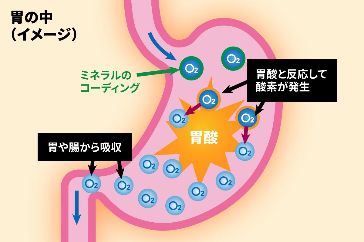 胃の中(イメージ):ミネラルコーディングがされたO2が、胃の中で胃酸と反応して酸素が発生。胃や腸から吸収される。