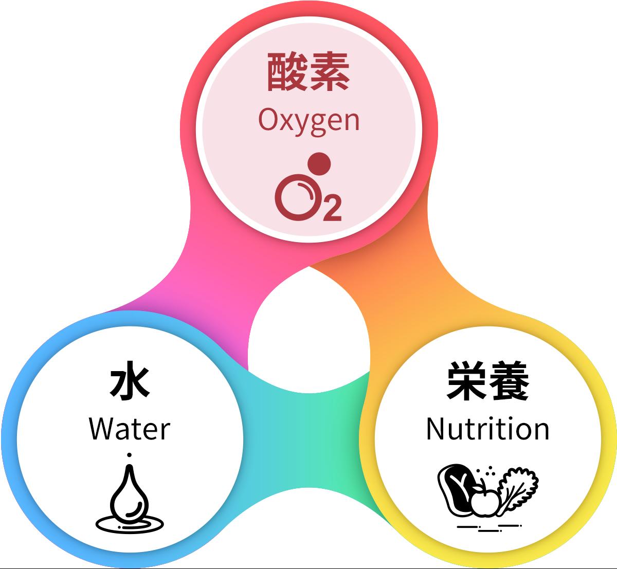 酸素(Oxygen)、水(Water)、栄養(Nutrition)、の3つのトライアングル